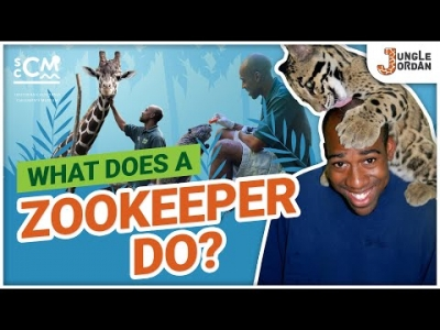 What does a Zookeeper do?